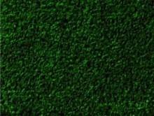 Dekoratif Yeşil | Kreş-Anaokul