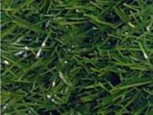 Elegant Yeşil | Kreş-Anaokul