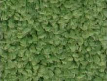 Fıstık Yeşil | Duvardan Duvara Halı | Samur