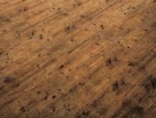 ID Premier Wood 2910 | Pvc Yer Döşemesi | Heterojen