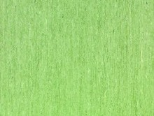 OPTİMA 3045 | Pvc Yer Döşemesi | Homojen